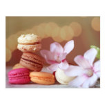 Macarons Postcard