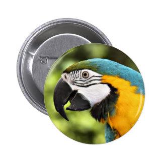 Macaw 6 Cm Round Badge