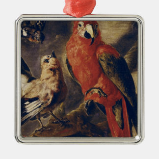 Macaw and Bullfinch Christmas Ornament