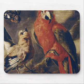 Macaw and Bullfinch Mouse Mat