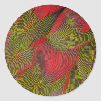 Macaw Breast Feather Design Classic Round Sticker