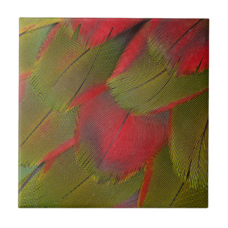 Macaw Breast Feather Design Tile