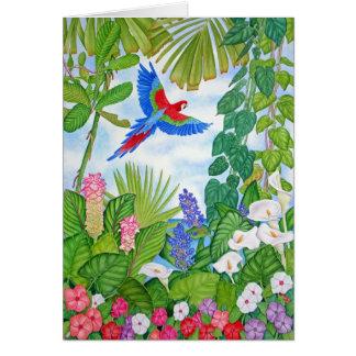 Macaw in Flight Card