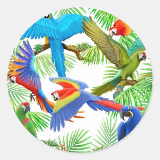 Macaw Jungle Sticker
