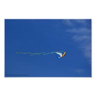 Macaw Kite Art Photo
