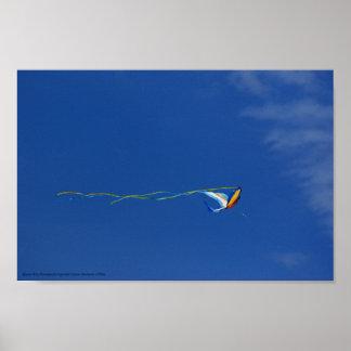 Macaw Kite Poster
