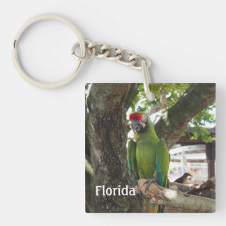 macaw or parrot key ring