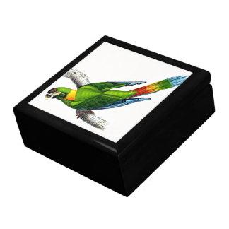 Macaw Parrot Bird Animal Wildlife Gift Box