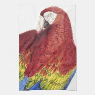Macaw Parrot Bird Animal Wildlife Kitchen Towels