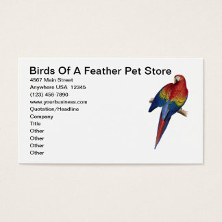 Macaw Parrot Bird Breeding Care Pet Store Business Card