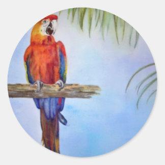 MACAW Parrot Bird Tropical Beach Theme Painting Round Sticker