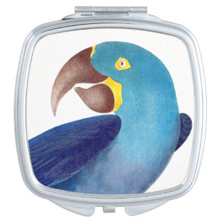 Macaw Parrot Bird Wildlife Animal Compact Vanity Mirrors