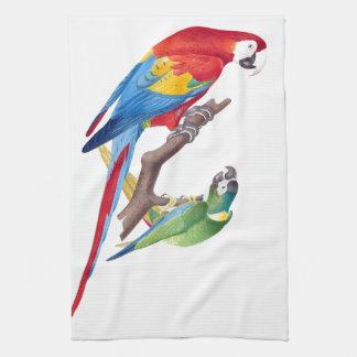 Macaw Parrot Birds Animal Wildlife Kitchen Towels