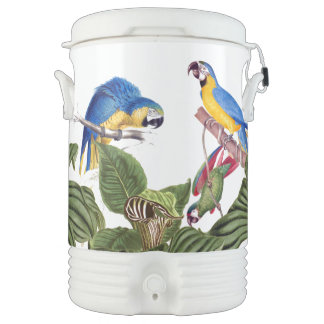 Macaw Parrot Birds Wildlife Animals Igloo Cooler