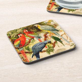 Macaw Parrot Birds Wildlife Animals Jungle Coaster