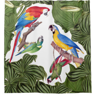 Macaw Parrot Birds Wildlife Animals Shower Curtain