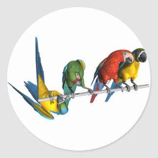 Macaw Parrot Classic Round Sticker