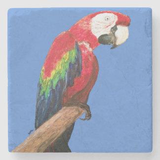 Macaw Parrot Coaster. Original Art Stone Coaster