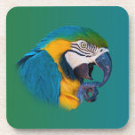 Macaw Parrot, Customisable Cork Coaster
