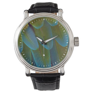 Macaw parrot feather pattern detail watch