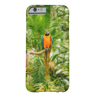 Macaw parrot in a green rain forest barely there iPhone 6 case