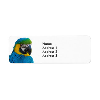 Macaw Parrot Return Address Labels