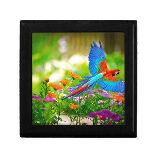 Macaw Parrot Small Square Gift Box