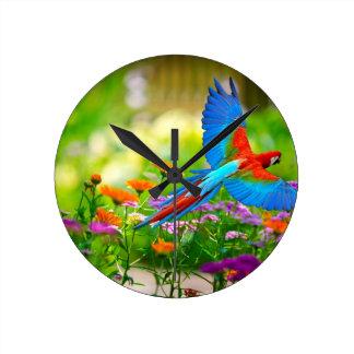 Macaw Parrot Wall Clocks