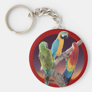 Macaw Parrots Key Ring