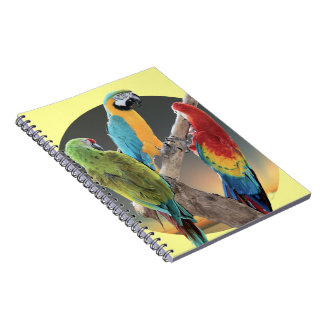 Macaw Parrots Spiral Notebooks
