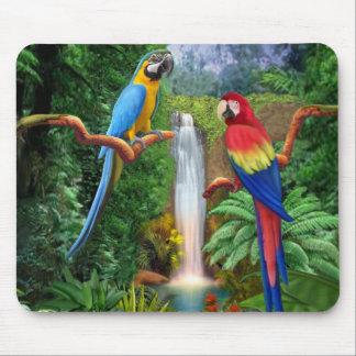 Macaw Tropical Parrots Mouse Mat