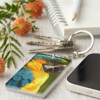 macaw, yellow and gold Double-Sided rectangular acrylic key ring