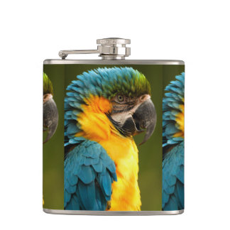 macaw, yellow and gold flasks