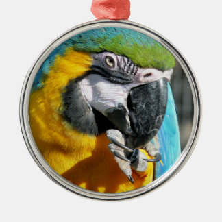 MACAWS Silver-Colored ROUND DECORATION
