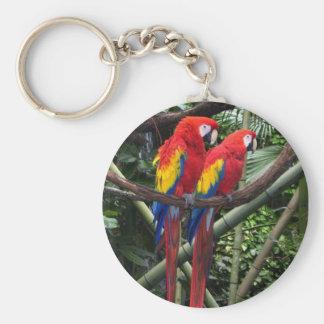 macaws key ring