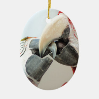 macaws kiss ceramic oval decoration