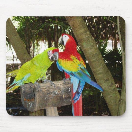 Macaws Mousepad