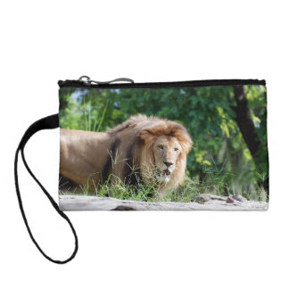 Macedonia Lion Coin Wallets