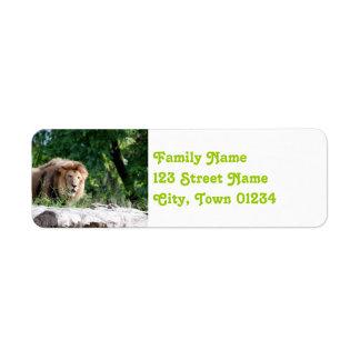 Macedonia Lion Return Address Label