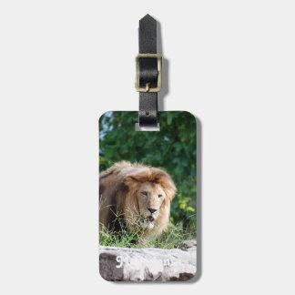 Macedonia Lion Tag For Luggage