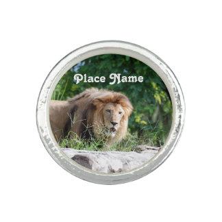 Macedonia Lion