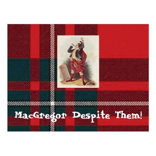 MacGregor Despite Them Postcards! Postcard
