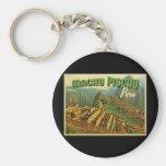 Machu Picchu Peru Key Chains
