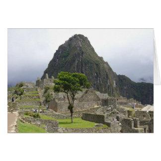 machu tree greeting card