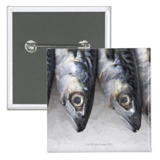 Mackerel fish, fresh catch of the day 15 cm square badge