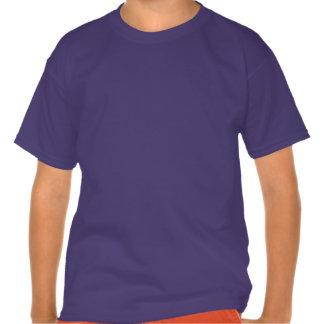 Maclaine of Lochbuie clan Plaid Scottish tartan T Shirts