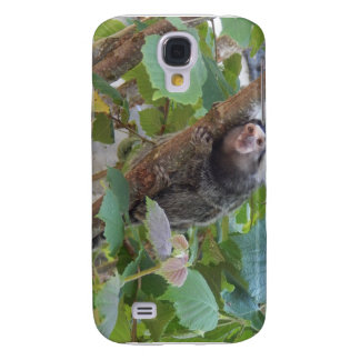 Macro Animal Photgraphy case