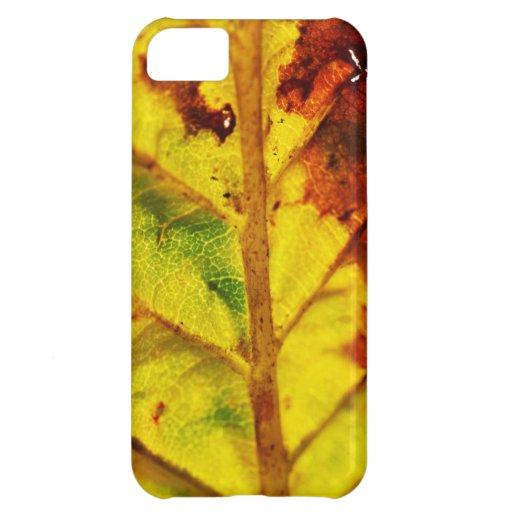 Macro Autumn Leaf Cover For iPhone 5C