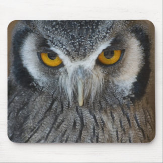 Macro Black and White Owl Mousepads