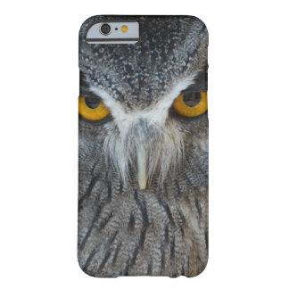 Macro Black and White Scops Owl Barely There iPhone 6 Case